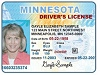 Driver's License Checks